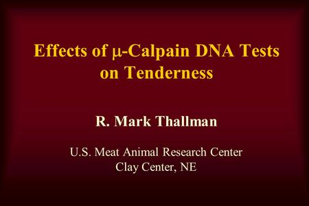Effects of  -Calpain DNA Tests on Tenderness R. Mark Thallman U.S. Meat Animal Research Center Clay Center, NE.
