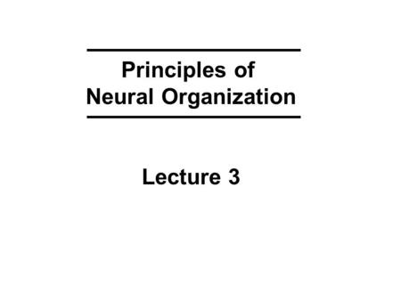 Principles of Neural Organization Lecture 3. KEYWORDS from Lecture 2 ACTION POTENTIALS 1 -- electrical stimulation (artificial depolarization) 2 -- spatial.