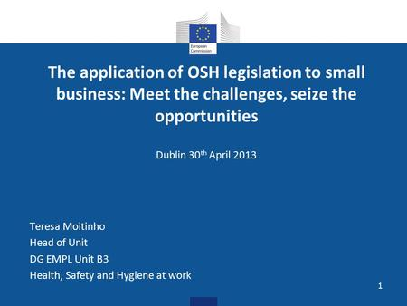 The application of OSH legislation to small business: Meet the challenges, seize the opportunities Dublin 30 th April 2013 Teresa Moitinho Head of Unit.