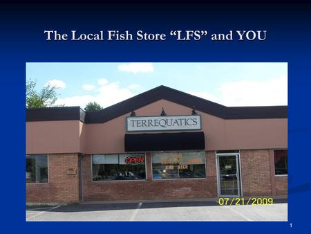 "1 The Local Fish Store ""LFS"" and YOU. 2 A Presentation for The Angelfish Society by Charles Hawks July 19, 2009."