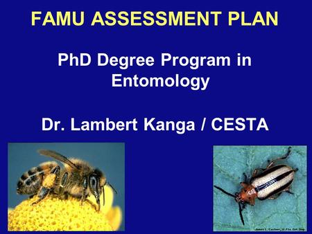 FAMU ASSESSMENT PLAN PhD Degree Program in Entomology Dr. Lambert Kanga / CESTA.