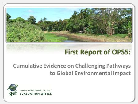 Cumulative Evidence on Challenging Pathways to Global Environmental Impact First Report of OPS5: