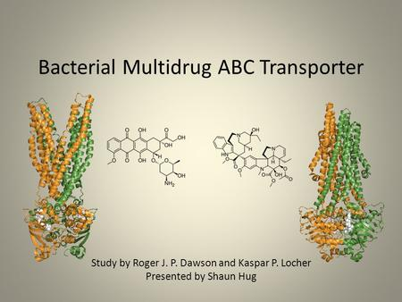Bacterial Multidrug ABC Transporter Study by Roger J. P. Dawson and Kaspar P. Locher Presented by Shaun Hug.