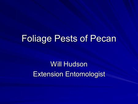 Foliage Pests of Pecan Will Hudson Extension Entomologist.