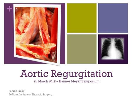 + Aortic Regurgitation 23 March 2012 – Hannes Meyer Symposium Jehron Pillay le Roux Institute of Thoracic Surgery.