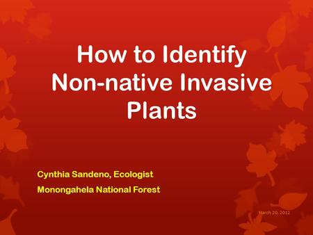 How to Identify Non-native Invasive Plants Cynthia Sandeno, Ecologist Monongahela National Forest March 20, 2012.