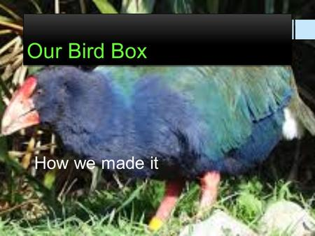Our Bird Box How we made it. This procedure will inform and explain how we made our model bird house out of cardboard. We will also explain why we made.