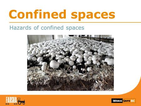 Confined spaces Hazards of confined spaces. Feed bins 2.