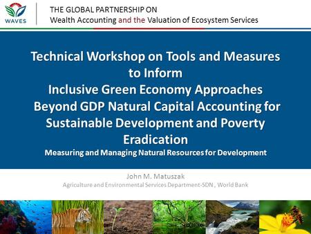 THE GLOBAL PARTNERSHIP ON Wealth Accounting and the Valuation of Ecosystem Services Technical Workshop on Tools and Measures to Inform Inclusive Green.