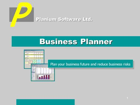 1 Business Planner Planium Software Ltd. Plan your business future and reduce business risks.