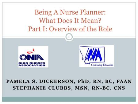 Being A Nurse Planner: What Does It Mean? Part I: Overview of the Role
