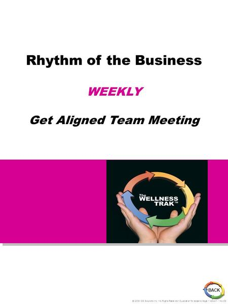 Rhythm of the Business WEEKLY Get Aligned Team Meeting © 2005 IDS Solutions Inc. All Rights Reserved Duplication for resale is illegal Version1.1 Nov06.