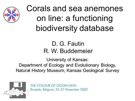 Corals and sea anemones on line: a functioning biodiversity database D. G. Fautin R. W. Buddemeier University of Kansas: Department of Ecology and Evolutionary.