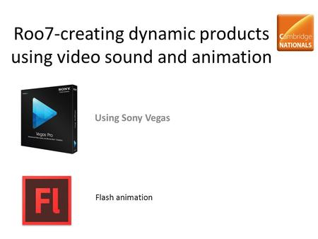 Roo7-creating dynamic products using video sound and animation