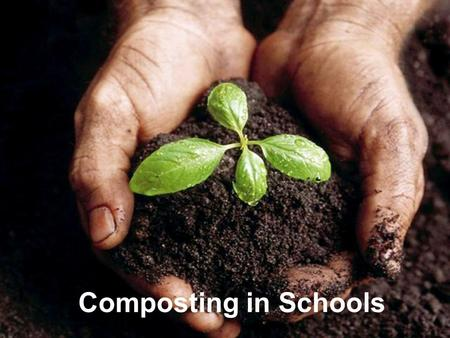 Composting in Schools.