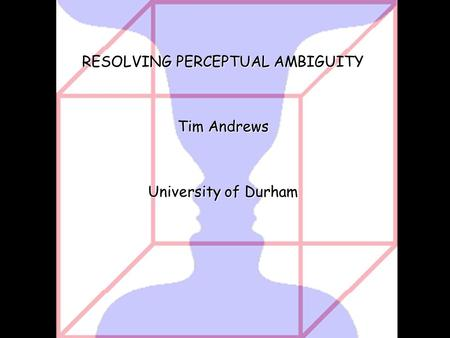 RESOLVING PERCEPTUAL AMBIGUITY Tim Andrews University of Durham.