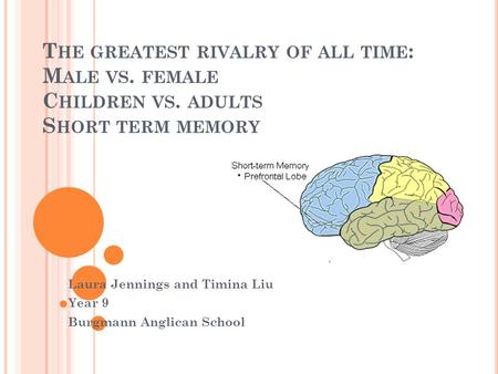 T HE GREATEST RIVALRY OF ALL TIME : M ALE VS. FEMALE C HILDREN VS. ADULTS S HORT TERM MEMORY Laura Jennings and Timina Liu Year 9 Burgmann Anglican School.