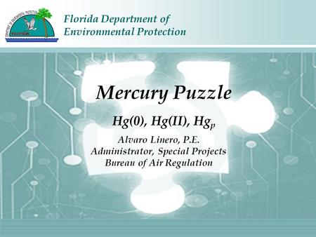 Florida Department of Environmental Protection Alvaro Linero, P.E. Administrator, Special Projects Bureau of Air Regulation Mercury Puzzle Hg(0), Hg(II),