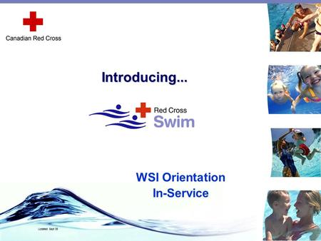 WSI Orientation In-Service