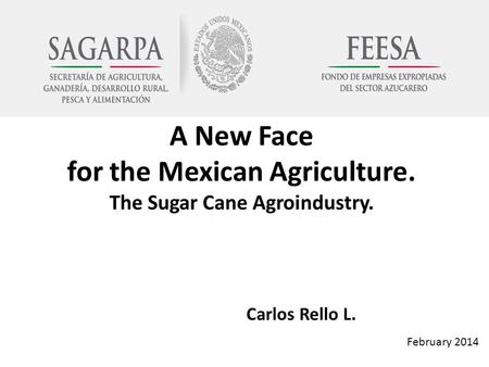 A New Face for the Mexican Agriculture. The Sugar Cane Agroindustry. Carlos Rello L. February 2014.