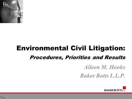 © 2011 Environmental Civil Litigation: Procedures, Priorities and Results Aileen M. Hooks Baker Botts L.L.P.