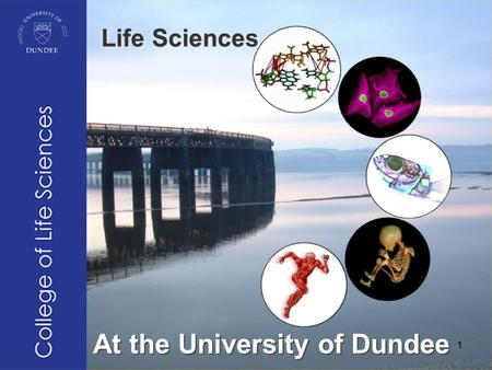 At the University of Dundee Life Sciences 1. © HEA Biosciences: Tom Tregenza © Jose Ordaz- Ortiz © Ijsbrand Kramer 2.
