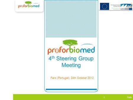 Date 1 WP1 4 th Steering Group Meeting Faro (Portugal), 24th October 2012.
