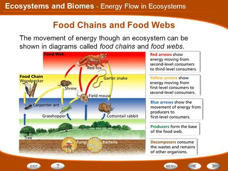 Ecosystems and Biomes Food Chains and Food Webs The movement of energy though an ecosystem can be shown in diagrams called food chains and food webs. -