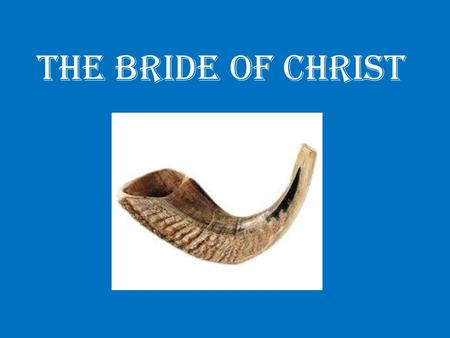 The Bride of Christ. Betrothal ceremony Wedding ceremony.