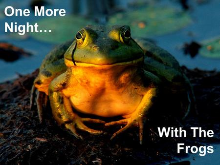 One More Night… With The Frogs. One More Night… With The Frogs.