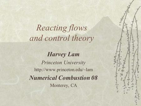 Reacting flows and control theory Harvey Lam Princeton University  Numerical Combustion 08 Monterey, CA.