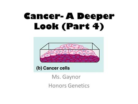 Cancer- A Deeper Look (Part 4) Ms. Gaynor Honors Genetics.