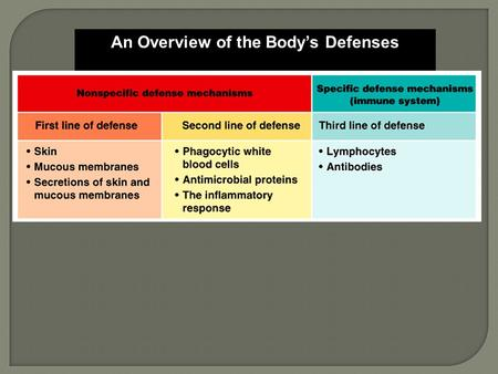 An Overview of the Body's Defenses. The first line of defense, the skin and mucous membranes, prevents most microbes from entering the body.