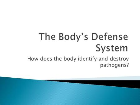 How does the body identify and destroy pathogens?.
