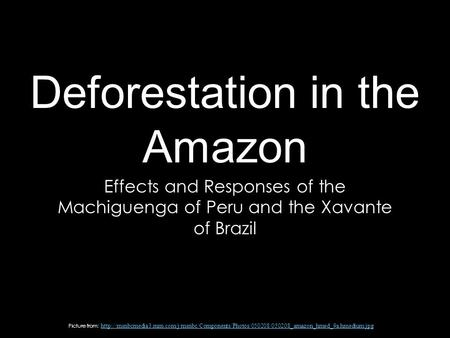 Deforestation in the Amazon Effects and Responses of the Machiguenga of Peru and the Xavante of Brazil Picture from: