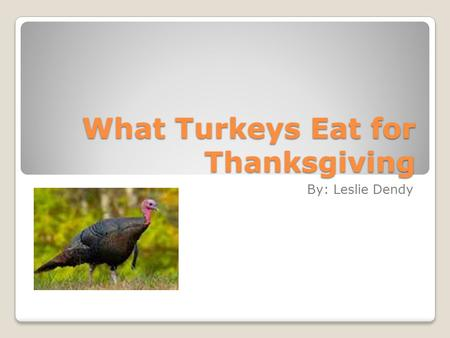 What Turkeys Eat for Thanksgiving