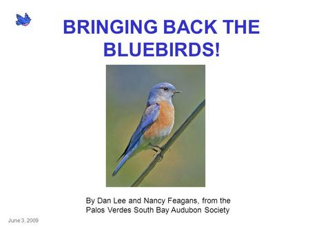 BRINGING BACK THE BLUEBIRDS! By Dan Lee and Nancy Feagans, from the Palos Verdes South Bay Audubon Society June 3, 2009.
