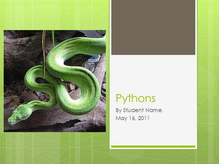 Pythons By Student Name May 16, 2011.