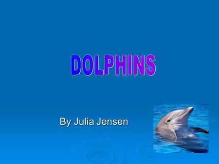DOLPHINS By Julia Jensen.