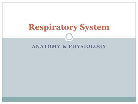 ANATOMY & PHYSIOLOGY Respiratory System. Functions of the Respiratory System Gas Exchange.