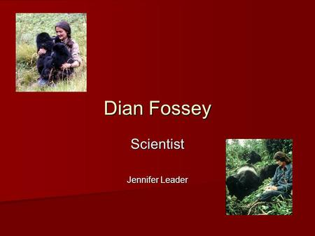Dian Fossey Scientist Jennifer Leader. Why Dian Fossey deserves to be in the Hall of Fame.  Dian Fossey studied animal behavior – particularly of mountain.