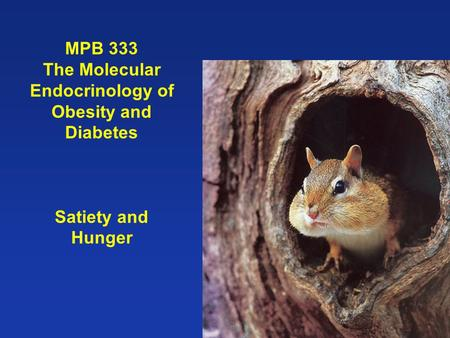 MPB 333 The Molecular Endocrinology of Obesity and Diabetes Satiety and Hunger.