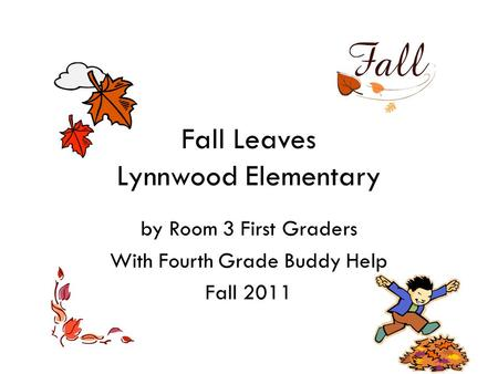 Fall Leaves Lynnwood Elementary by Room 3 First Graders With Fourth Grade Buddy Help Fall 2011.