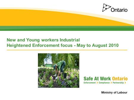 Ministry of Labour New and Young workers Industrial Heightened Enforcement focus - May to August 2010.