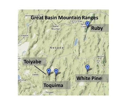 Great Basin Mountain Ranges Ruby White Pine Toiyabe Toquima.