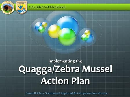 Quagga/Zebra Mussel Action Plan Implementing the U.S. Fish & Wildlife Service David Britton, Southwest Regional AIS Program Coordinator.