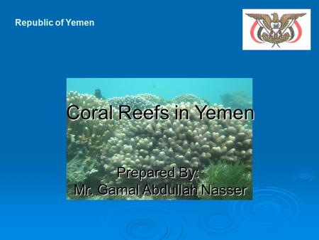 Republic of Yemen Prepared By: Mr. Gamal Abdullah Nasser Coral Reefs in Yemen.