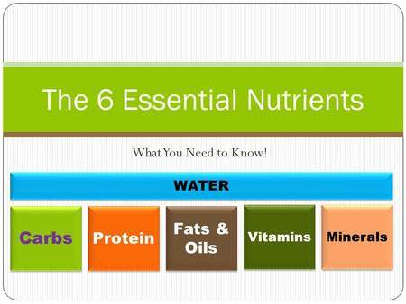What You Need to Know! The 6 Essential Nutrients Carbs Protein Fats & Oils Vitamins Minerals WATER.
