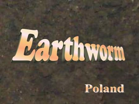 The benefits of earthworms are well-known. They are tireless tillers of our soils and their castings are the richest and best of all fertilizers. It is.