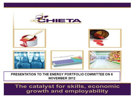 PRESENTATION TO THE ENERGY PORTFOLIO COMMITTEE ON 6 NOVEMBER 2012.